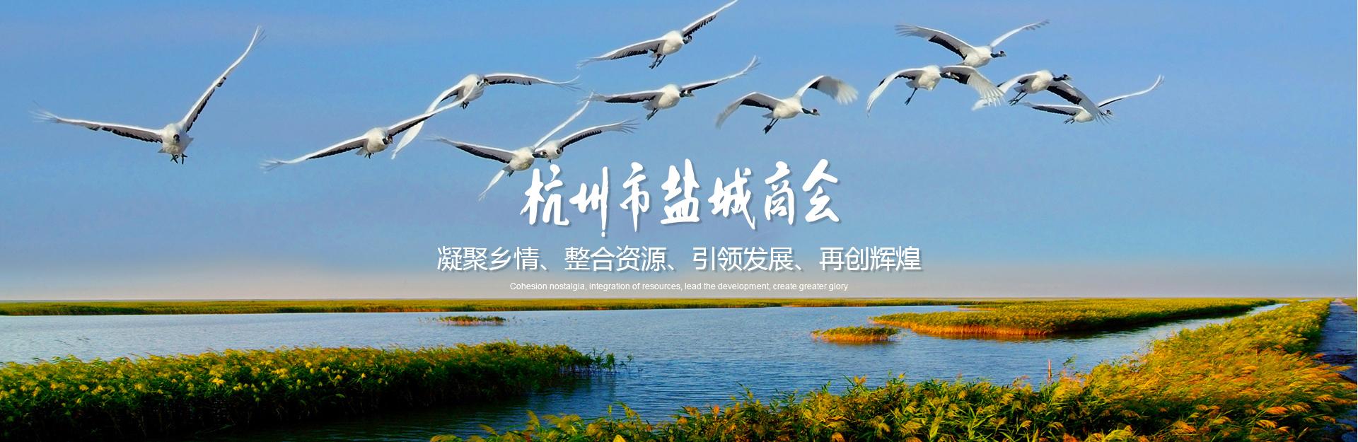 杭州市盐城商会